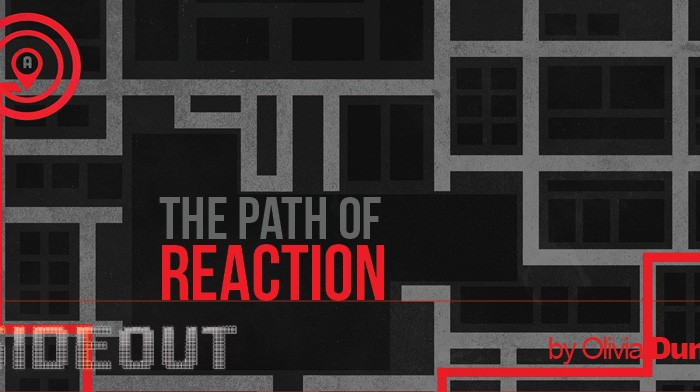 The Path of Reaction
