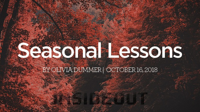 Seasonal Lessons